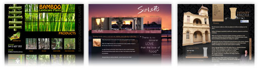 Website Designs Perth